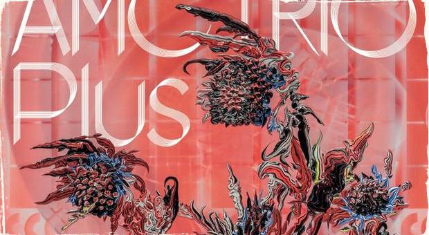 Recenzia CD: AMC Trio a ich návrat domov
