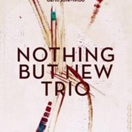 Nothing but New Trio, 8.11.2014 19:00