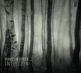 Pavol Bereza - Intuition