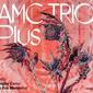 amc cover.jpg