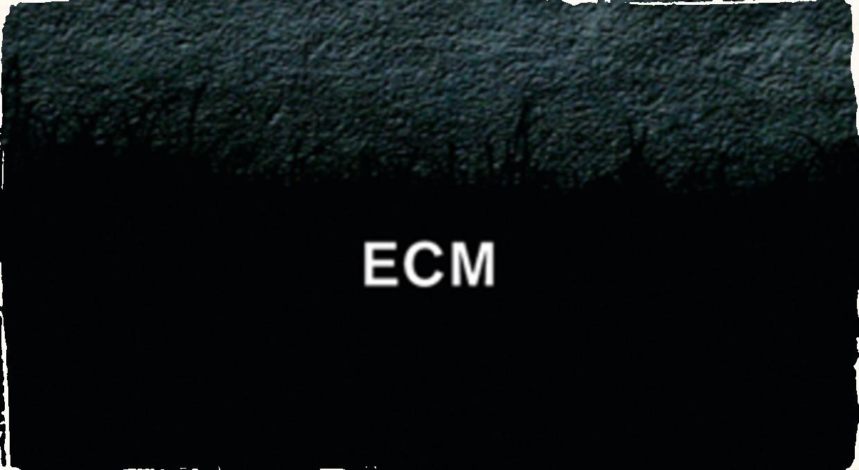 Vydavateľstvo ECM má 50 rokov: Výročie oslávi veľkým koncertom v Jazz at Lincoln Center