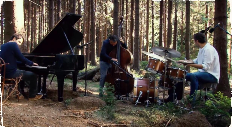 Ako znie jazz v lese: Robert Balzar natočil nové DVD